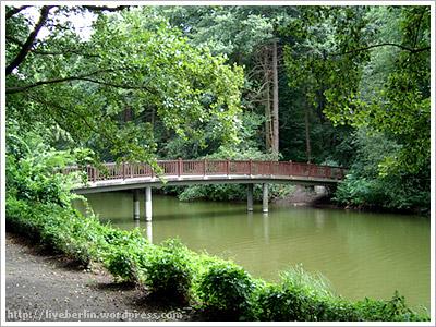 Bridge in the Park Jungfernheide