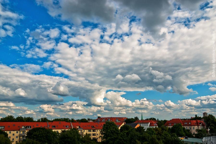 Summer Sky Over the Tierpark